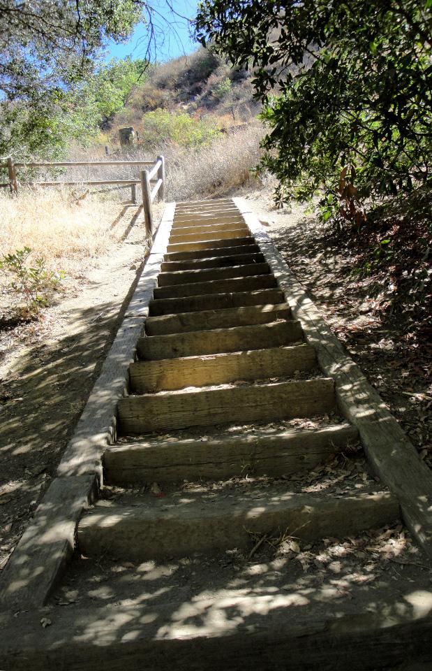 Mason_Wildwood_Stairs