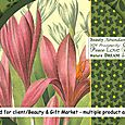 PinkFloral_Product_illustration