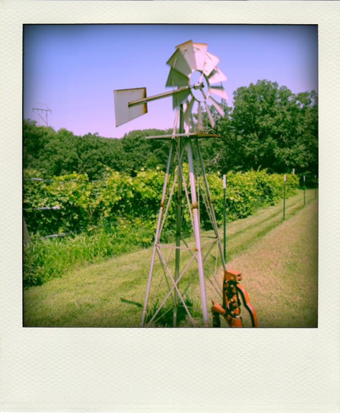 Mason_Windmill